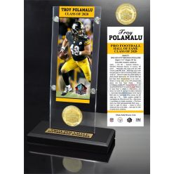 Troy Polamalu 2020 HOF Bronze Coin Ticket Acrylic