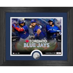 Toronto Blue Jays Team Force Silver Coin Photo Mint