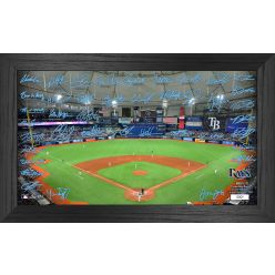 Tampa Bay Rays 2021 Signature Field Photo Frame