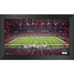 Arizona Cardinals 2021 Signature Gridiron Collection