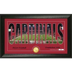 "Arizona Cardinals ""Silhouette"" Panoramic Bronze Coin Photo Mint"