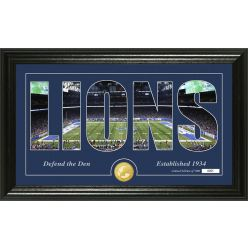 """Detroit Lions """"Silhouette"""" Panoramic Bronze Coin Photo Mint"""