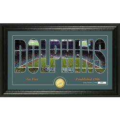 """Miami Dolphins """"Silhouette"""" Panoramic Bronze Coin Photo Mint"""