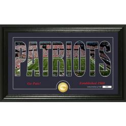 """New England Patriots """"Silhouette"""" Panoramic Bronze Coin Photo Mint"""