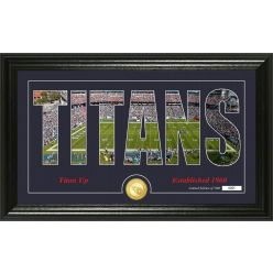 "Tennessee Titans ""Silhouette"" Panoramic Bronze Coin Photo Mint"
