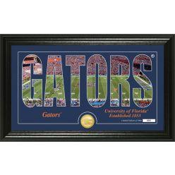 "University of Florida ""Silhouette"" Bronze Coin Photo Mint"