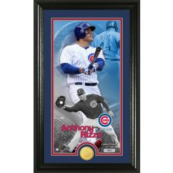 Anthony Rizzo Supreme Bronze Coin PhotoMint