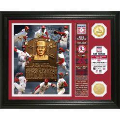 Bob Gibson Class of 1981 Banner Bronze Coin Photo Mint