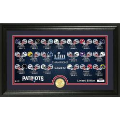 New England Patriots Super Bowl 53 Bronze Coin Panoramic Photo Mint