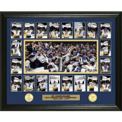 St Louis Blues 2019 Stanley Cup Champions Memorable Moment Bronze coin Photo Mint