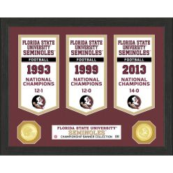 Florida State University National Champions Banner Collection Photo Mint