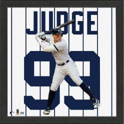 Aaron Judge Impact Jersey Framed Photo