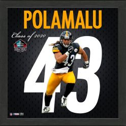 Troy Polamalu Impact Jersey Framed Photo