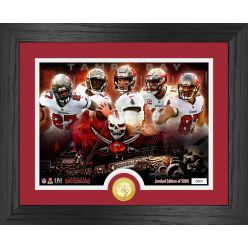 Tampa Bay Buccaneers Team Force Bronze Coin Photo Mint