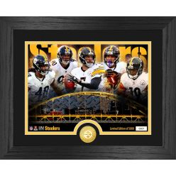 Pittsburgh Steelers Team Force Bronze Coin Photo Mint