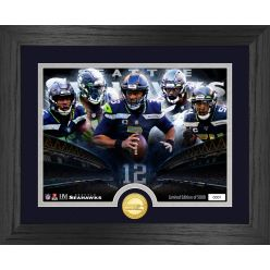 Seattle Seahawks Team Force Bronze Coin Photo Mint