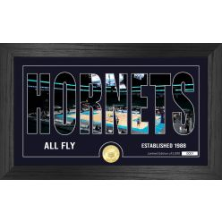 Charlotte Hornets Silhouette Bronze Coin Photo Mint
