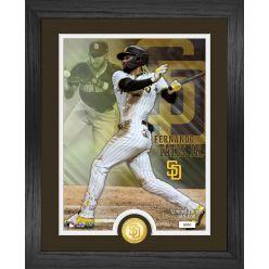 Fernando Tatis Jr.  San Diego Padres Bronze Coin Photo Mint