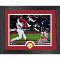 Nolan Arenado Cardinals Debut Bronze Coin Photo Mint