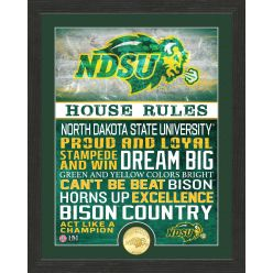 North Dakota State University Bison House Rules Bronze Coin Photo Mint