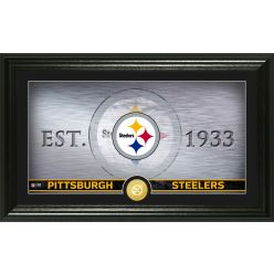Pittsburgh Steelers Personalized Man Cave Bronze Coin Photo Mint