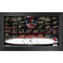 Ottawa Senators 2021 Signature Rink